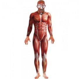 Morphsuit anatomy kostým